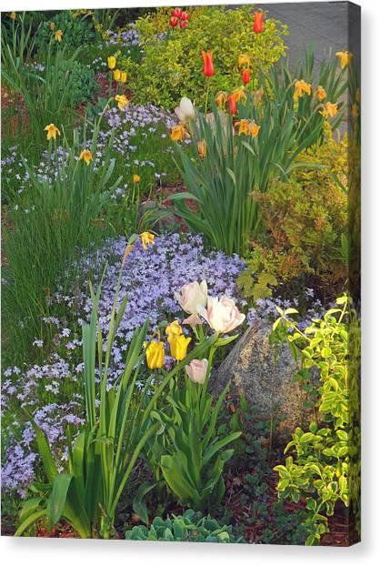 Zacks Garden - Hope Bay Campground Canvas Print