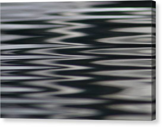 Zebra Waters Canvas Print