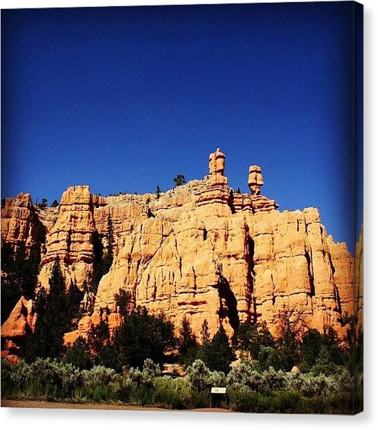 Rock Canvas Print - Zion National Park by Luisa Azzolini