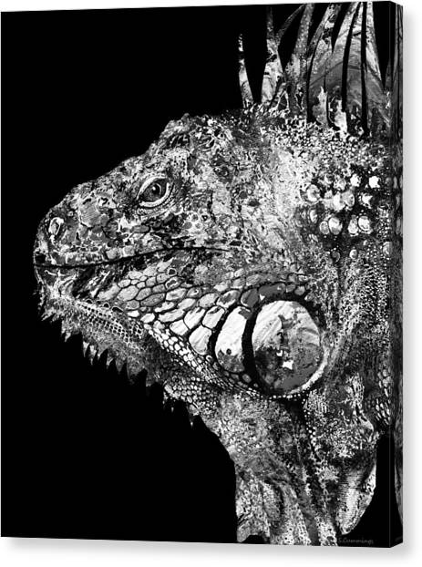 Iguanas Canvas Print -  Black And White Iguana Art - One Cool Dude 2 - Sharon Cummings by Sharon Cummings