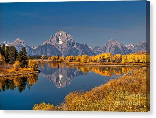 Fall Colors At Oxbow Bend In Grand Teton National Park Canvas Print