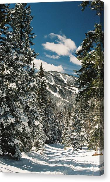 Fresh Powder Canvas Print