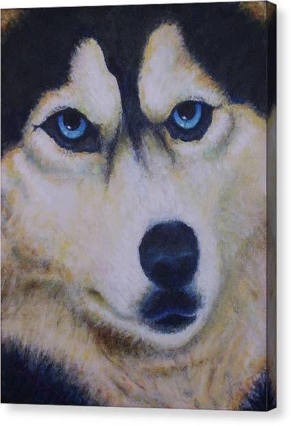 Husky For Cyrus Canvas Print