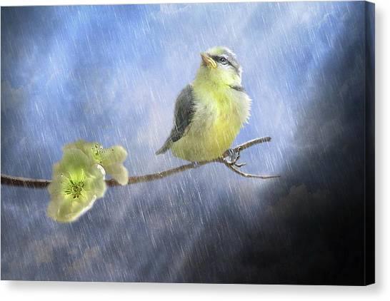 Rain Canvas Print -  Little Sunshowers by Trudi Simmonds