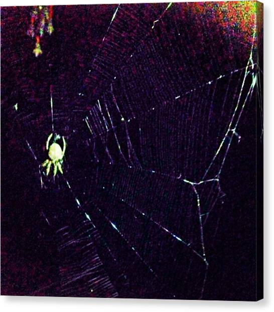 Spider Web Canvas Print - Web Of Lies by Ashley Baker
