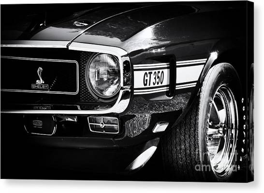 Front End Canvas Print -  Shelby Gt350 by Tim Gainey