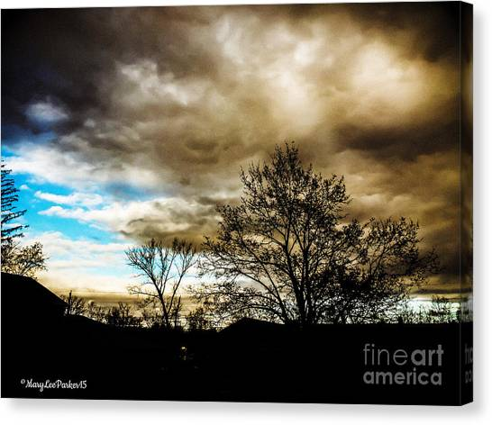 Storm  Coming  Canvas Print