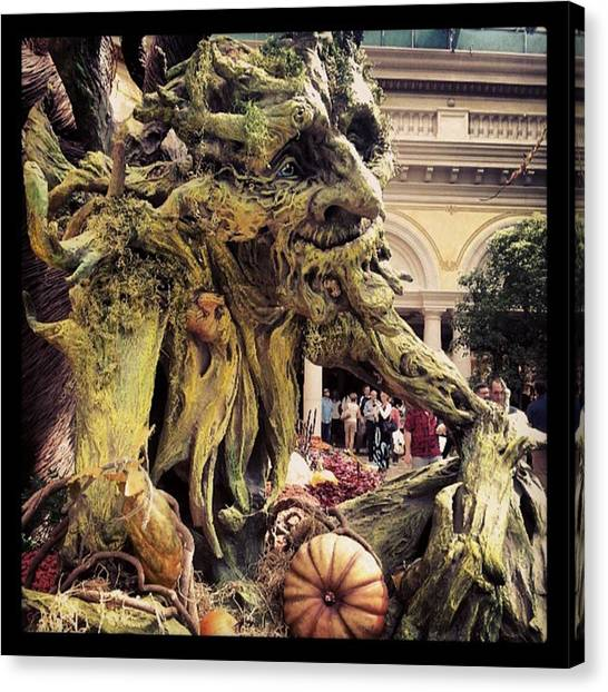 Decorative Canvas Print - #trollgarden by Raymie Jackman