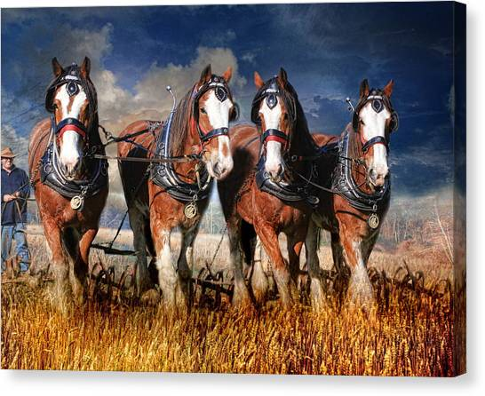 The Team Canvas Print