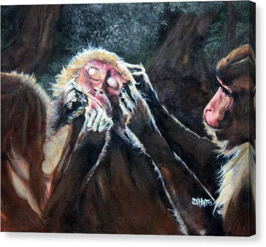 Three Monkeys Canvas Print