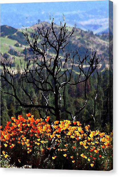 Tree And Poppies Canvas Print
