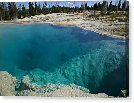 Wy Canvas Print -   Turquoise Hot Springs Yellowstone by Garry Gay