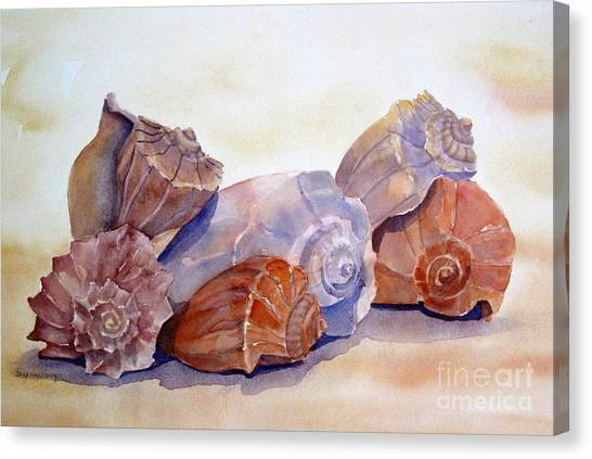 Whelks Canvas Print