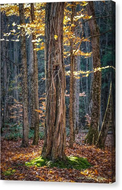 #0187 - Dummerston, Vermont Canvas Print