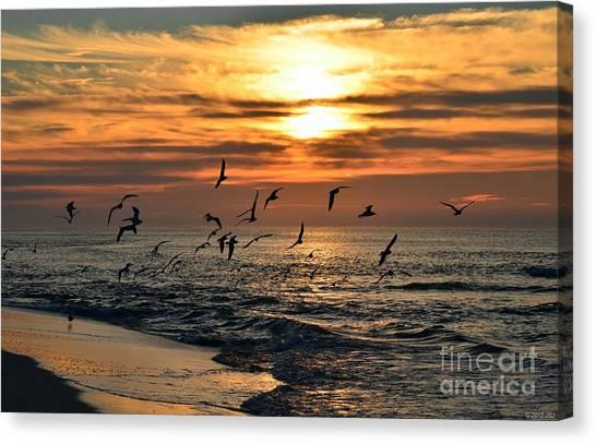 0221 Gang Of Gulls At Sunrise On Navarre Beach Canvas Print
