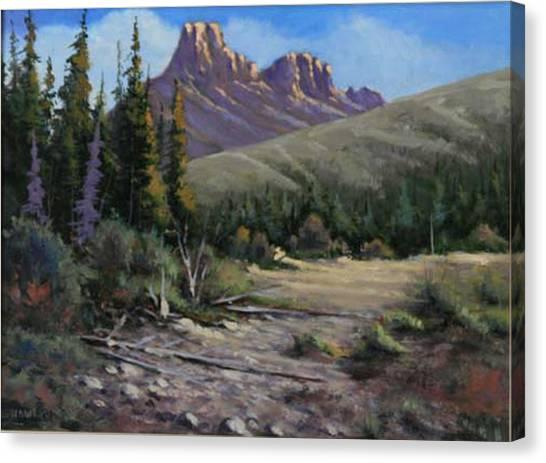 040610-912 Horse Thief Creek Canvas Print by Kenneth Shanika