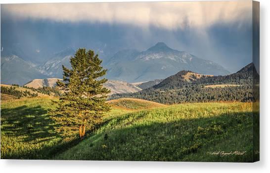 #0613 - Absaroka Range, Paradise Valley, Southwest Montana Canvas Print