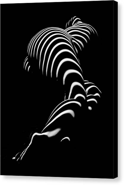 0774-ar Zebra Striped Figure Of A Large Woman Fine Art Photograph By Chris Maher Canvas Print