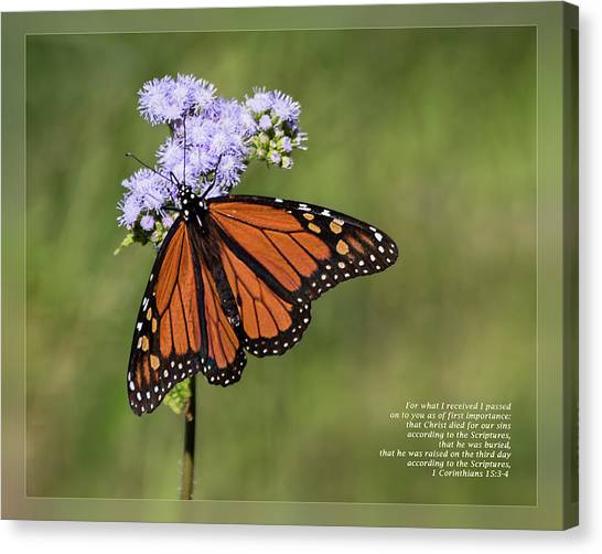 Canvas Print featuring the photograph 1 Corinthians 15 3-4 by Dawn Currie