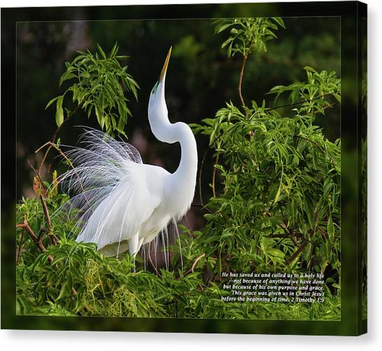 Canvas Print featuring the photograph 2 Timothy 1 9 by Dawn Currie