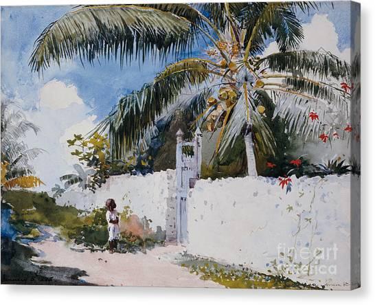 Winslow Canvas Print - A Garden In Nassau by Winslow Homer