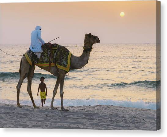 Little Boy Stares In Amazement At A Camel Riding On Marina Beach In Dubai, United Arab Emirates -  Canvas Print