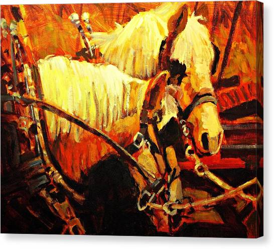 Horse Farms Canvas Print - A-team by Brian Simons