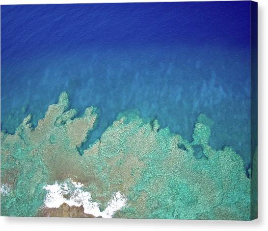 Canvas Print featuring the photograph Abstract Aerial Reef by Denise Bird