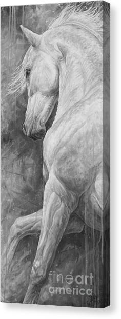 Dressage Canvas Print - Allegro by Silvana Gabudean Dobre