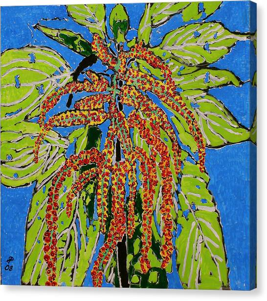 Amaranthus Sold Canvas Print by Ray  Petersen