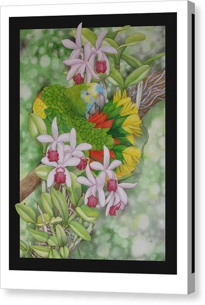 Amazon 3 Canvas Print by Darren James Sturrock