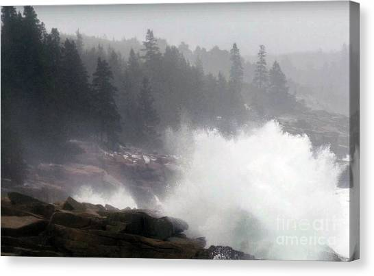 Hoodie Canvas Print - American National Parks Hotspots  Photo Collection Beyond Your Wild Imaginations Posters Canvas Gree by Navin Joshi