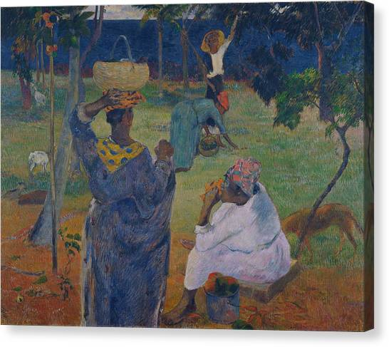 Mango Tree Canvas Print - Among The Mangoes At Martinique by Paul Gauguin