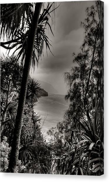 Ancient Kauai Canvas Print