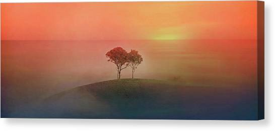 Wine Country Canvas Print - After The Rain by Az Jackson