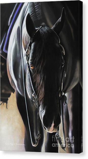 Black Stallion Canvas Print - Any Time...any Place by Joni Beinborn