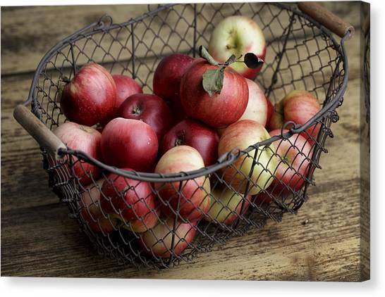Apple Canvas Print - Apples by Nailia Schwarz
