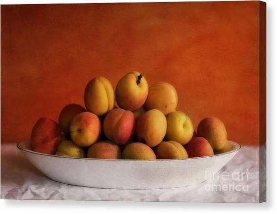Bowl Canvas Print - Apricot Delight by Priska Wettstein