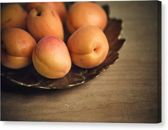 Fruits Canvas Print - Apricots by Nailia Schwarz