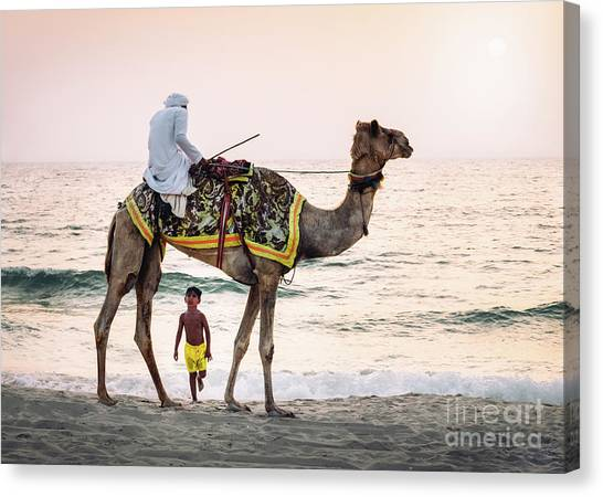 Arabian Nights Canvas Print
