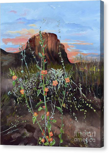 Arizona Desert Flowers-dwarf Indian Mallow Canvas Print