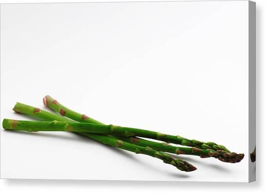 Vegetables Canvas Print - Asparagus by Alice Kent