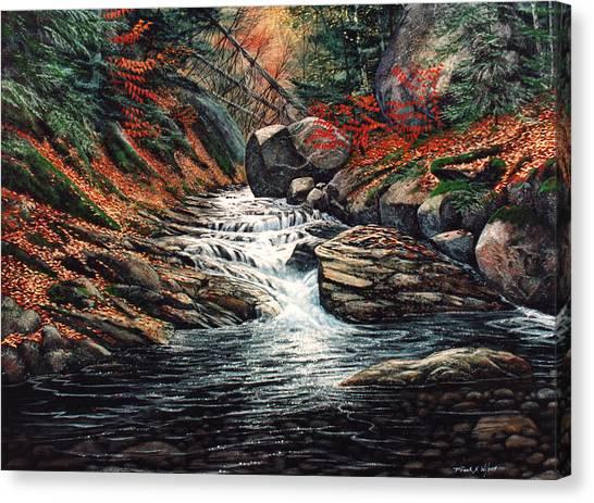 Autumn Brook Canvas Print