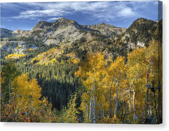 Autumn Colors In The Wasatch Mountains Canvas Print