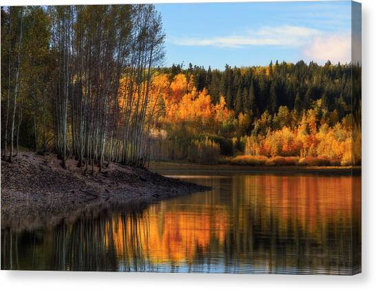 Autumn In The Wasatch Mountains Canvas Print