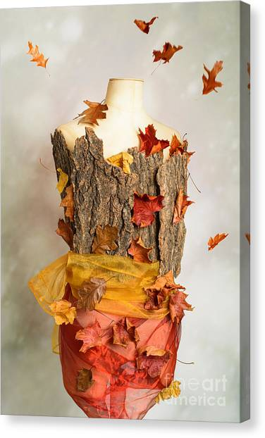 Dummies Canvas Print - Autumn Mannequin by Amanda Elwell