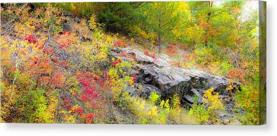 Canvas Print - Autumn Palette by Mary Amerman