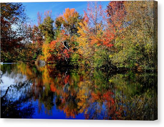 Autumn Pond Canvas Print by Gary Bydlo