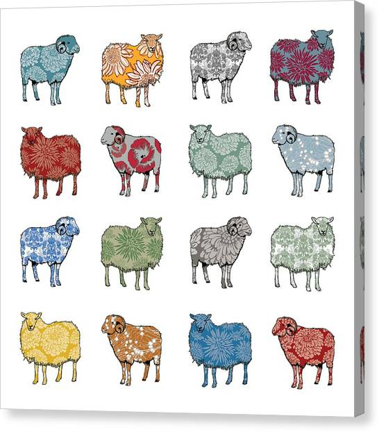 Patterns Canvas Print - Baa Humbug by Sarah Hough