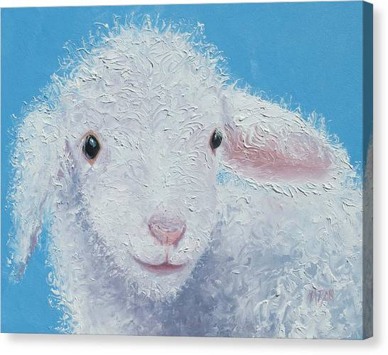 Childrens Room Canvas Print - Baby Lamb by Jan Matson